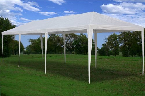 10 X30 Party Wedding Tent Gazebo Pavilion Catering