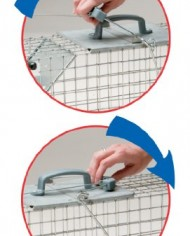 Havahart-1062-Easy-Set-Two-Door-Cage-Trap-for-Rabbits-Skunks-and-Squirrels-0-3