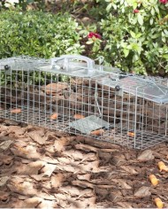 Havahart-1062-Easy-Set-Two-Door-Cage-Trap-for-Rabbits-Skunks-and-Squirrels-0-6