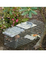 Havahart-1090-Easy-Set-Collapsible-One-Door-Cage-Trap-for-Rabbits-Skunks-and-Squirrels-0-1