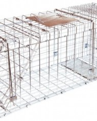 JT-Eaton-495N-Single-Door-Live-Animal-Cage-Trap-for-Large-Size-Pests-0